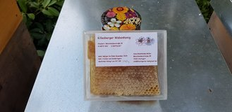 comb honey from Stuttgart in Stuttgart, GE