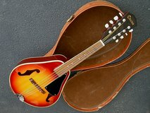 Beautiful Citation A-Style Mandolin in Bartlett, Illinois