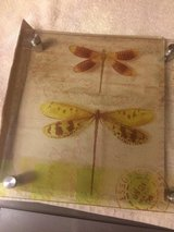 Tim Holtz Glass Dragonfly Wall Art in Biloxi, Mississippi