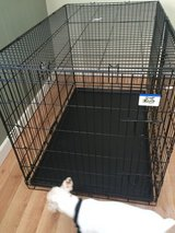 Pet Lodge XL cage crate kennel with tray in Lockport, Illinois