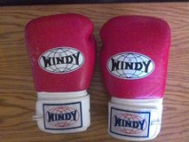 Windy Sports Boxing Gloves in Yucca Valley, California