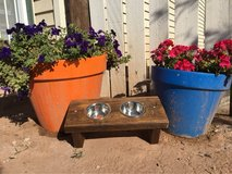 Extra Small Elevated Feeder (cat or tiny dog) in Alamogordo, New Mexico
