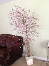 6 ft tall artificial blooming flowering cherry blossom tree in Glendale Heights, Illinois