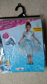 Disney princess costume in Glendale Heights, Illinois
