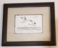 REDUCED Rare Framed Print Terns in 29 Palms, California
