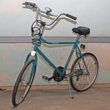 Yankee Bicycle in Batavia, Illinois