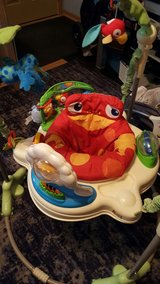Fisher price jumperoo in Morris, Illinois