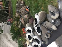 Duck and geese decoys in Oswego, Illinois