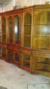 Living room or dining room cabinet in Chicago, Illinois