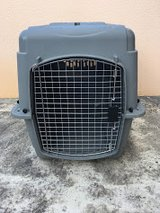 Medium Pet Crate in Okinawa, Japan