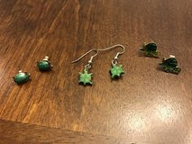 Turtle Earrings in Chicago, Illinois