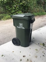 Garbage/Recycling bin in Naperville, Illinois