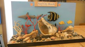 Sea Display in Camp Lejeune, North Carolina