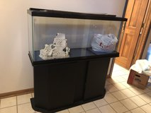Moving sale--fish tank with all accessories (pumps, filter, pebbles, cleaning brush etc) in Sugar Grove, Illinois