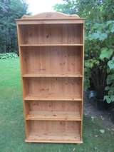 Tall Pine Bookshelf in Naperville, Illinois