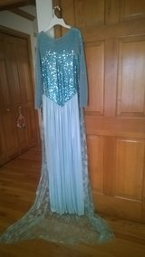 Adult Frozen dress for halloween in Aurora, Illinois