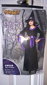Halloween Costume - Charmed Witch w/Dress and Hat in St. Charles, Illinois
