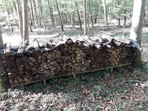 Seasoned Firewood for Sale in Stuttgart, GE