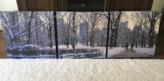 NYC Central Park in Winter on 3 Canvases in Fort Belvoir, Virginia