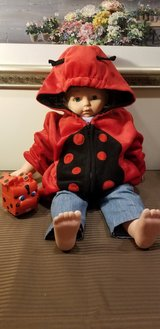 Lady bug Sweater in Naperville, Illinois
