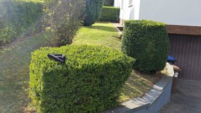 Affordable Lawn and Landscaping in Ramstein, Germany