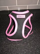 Small dog harness in Lakenheath, UK