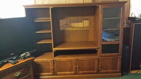 Free entertainment center in Plainfield, Illinois