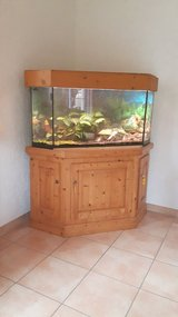 Aquarium (210 liters) angular with base carbinet (pine wood) including accessories and fishes in Ramstein, Germany