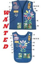 WANTED - Girl Scout Daisy uniform in Shorewood, Illinois