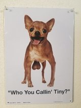 Who you callin Tiny? in 29 Palms, California