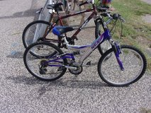 "24"" Next Ladies Bicycle in Fort Riley, Kansas"