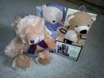 Baby Harness Buddy, Snoring Teddy & Bear - Nbr 40 in Lakenheath, UK