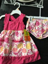 12 month NWT dress & bloomer in Naperville, Illinois