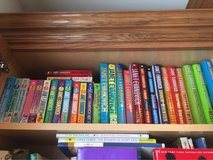 Janet Evanovich book collection in Yorkville, Illinois
