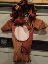 Lion Halloween Costume in Fort Campbell, Kentucky