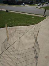 Dog play yard in Fort Campbell, Kentucky