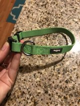 Blueberry Pet Neon Green Collar in Aurora, Illinois