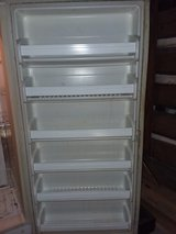 Upright freezer in Leesville, Louisiana