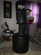 EVERLAST POWER CORE FREE STANDING HEAVY BAG in St. Charles, Illinois