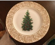 Decorative Christmas Plate in St. Charles, Illinois