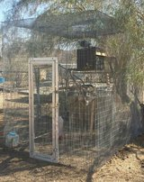 Large walk-in Aviary/Cage in Yucca Valley, California