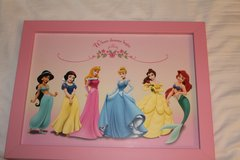 Disney Princess Picture in Pink Frame in Naperville, Illinois