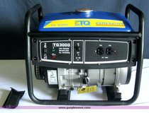 Back Up Generator TQ TG3000 in Naperville, Illinois