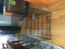 Large dog crate in Chicago, Illinois