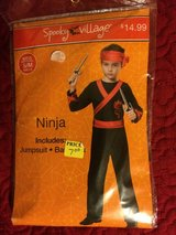 Ninja Costume in Kingwood, Texas