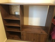 Entertainment Center & DVD stand in Kingwood, Texas