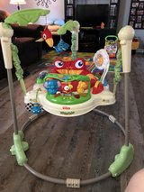 FISHER PRICE RAINFOREST JUMPEROO in Macon, Georgia