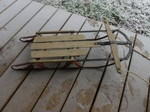 Speedy Snow Sled in Alamogordo, New Mexico
