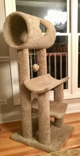 CAT TREE House Condo in Chicago, Illinois