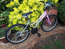 Pink/Silver Probike Saphire in Lakenheath, UK